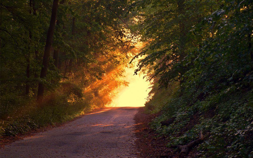 Aclaraciones sobre aspectos del Camino Espiritual