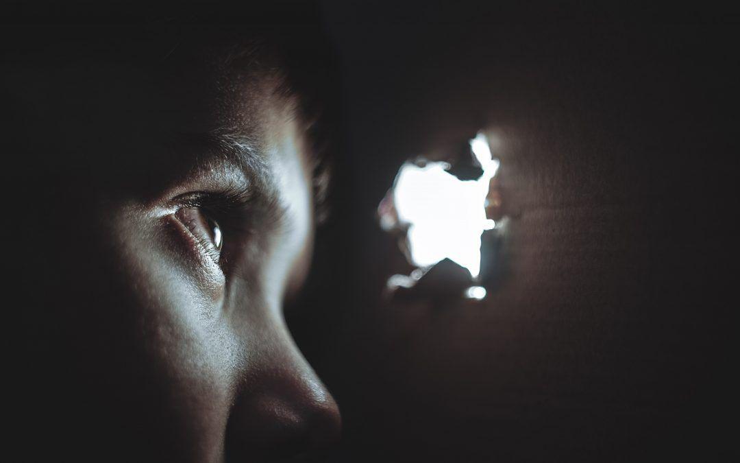 Investigando y Reconociendo la Consciencia: La Visión